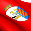 Flag of Salamanca City, Spain. - Stock Photo