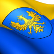 Flag of Opole Voivodeship, Poland. — Stock Photo #12396620