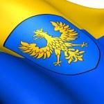 Flag of Opole Voivodeship, Poland. — Stock Photo