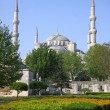 The Blue Mosque in Istanbul, Turkey - Foto Stock