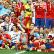 Spain - the winner of UEFA EURO 2012 — Stock fotografie
