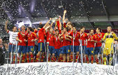 Spain - the winner of UEFA EURO 2012 — Stock Photo