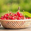Sweet cherry — Stock fotografie