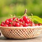 Sweet cherry — Photo