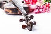 Black old violin — Stock Photo