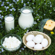 Постер, плакат: Dairy products