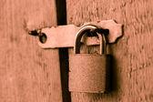 La cerradura de la puerta — Foto de Stock