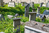 The Remuh Cemetery in Krakow, Poland, is a Jewish cemetery estab — Stock Photo