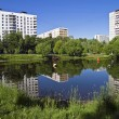 Stock Photo: Small pond in city.