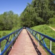 Footbridge in Forest Park. — Stock Photo