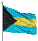 Waving flag of Bahamas — Stock Photo