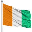 Waving flag of Cote dIvoire — Stock Photo #11030315