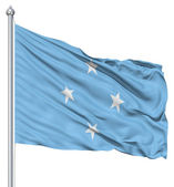 Waving flag of Federated States — Stock Photo