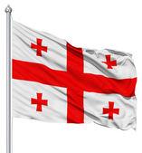 挥舞着国旗的格鲁吉亚 — 图库照片