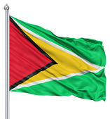 Waving flag of Guyana — Stock Photo