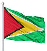 Waving flag of Guyana — Stock Photo