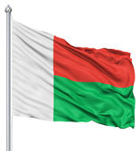 Waving flag of Madagascar — Stock Photo