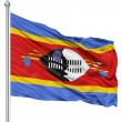Waving flag of Swaziland — Stock Photo