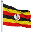 Waving flag of Uganda — Stock Photo #11049418