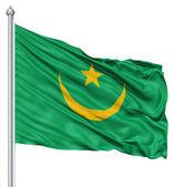 Agitant le drapeau de la mauritanie — Photo