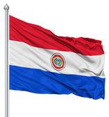 Waving flag of Paraguay — Stock Photo