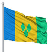 Waving flag of Saint Vincent and the Grenadines — 图库照片