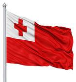 Waving flag of Tonga — Stock Photo