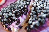 Close-up of Blueberry pie — Stock Photo
