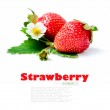 Strawberry berry with green leaf and flower — Stock Photo #11539943
