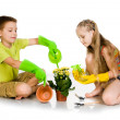 Kids transplanted the plant — Stock Photo