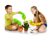 Kids transplanted the plant — Stock Photo