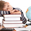 Tired schoolboy - Stock Photo