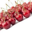 Cerises rouges — Photo