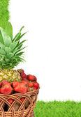 Fresh fruit — Stockfoto