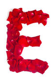 Letter E made from red petals rose on white — Stock Photo