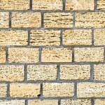 Shell limestone wall texture background. — Stock Photo #11688251
