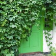Stock Photo: Green front door.