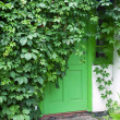 Green front door. — Stock Photo
