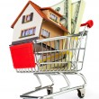 Shopping cart and house — Stock Photo #11042898