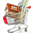 Shopping cart and house — Stock Photo #11042903