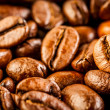 coffee beans — Stock Photo #11042936