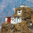 Dhankar Gompa. India. Spiti Valley — Stock Photo #11796407