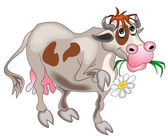 Cow with flower is insulated on white — Stock Vector