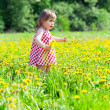 Little girl walks in the field with dandelions — Stock Photo