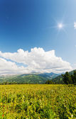 Vertical landscape with mountains, Altai, Suberia — Stock Photo