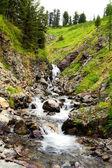 Güzel manzara ile dağ nehri — Stok fotoğraf