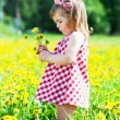 Little girl on a glade with dandelions — Foto Stock