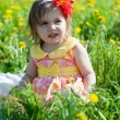 Little girl with a red flower in hair sits on a grass — Stock Photo