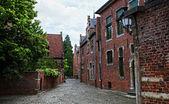 Estrada das casas típicas de groot begijnhof — Fotografia Stock