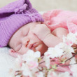 Newborn girl in a violet hat sleeps under a pink cape — Stock Photo
